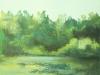 paysage-vert-5-100x100