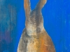 DEGUISEMENT LAPIN - 60 x 60